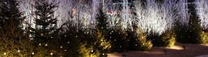 聖誕市集氣氛