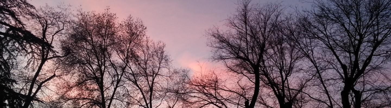 麗池公園夕陽 Parque del Retiro