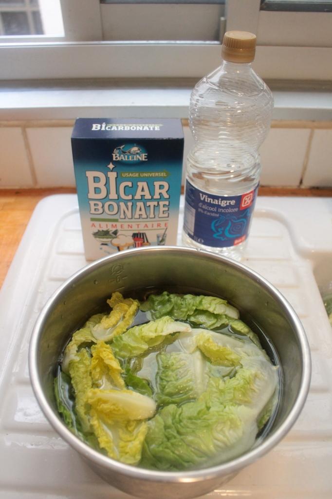 如何清洗蔬菜