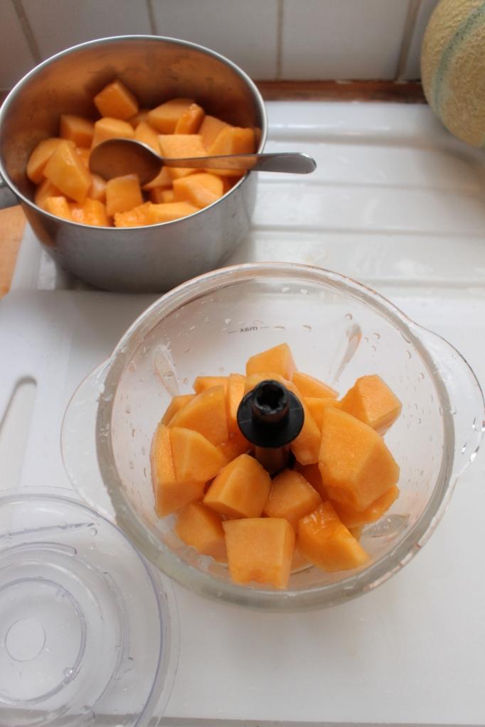 當記水果 sorbet冰淇淋做法