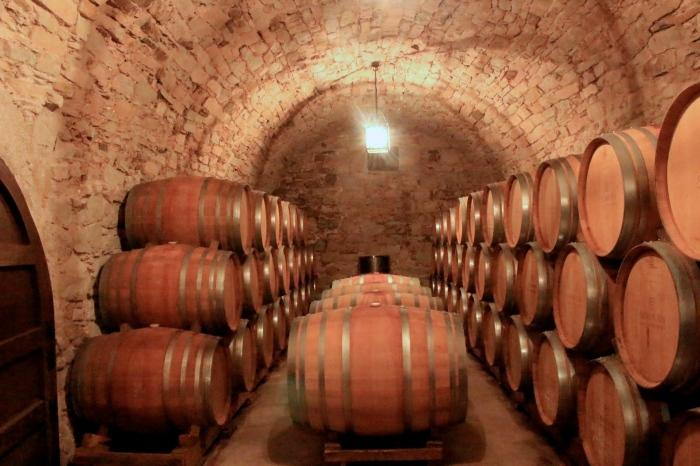 巴塞隆納自助旅行 葡萄酒 Tour